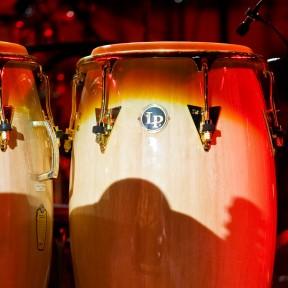Jazz_a_Vienne_2008_05