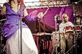Jazz_a_Vienne_2009_08