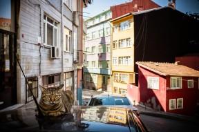 Istanbul_36