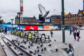 Copenhague_07