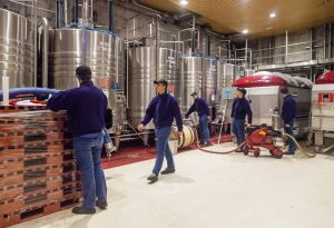 La vinification au Domaine E. Guigal